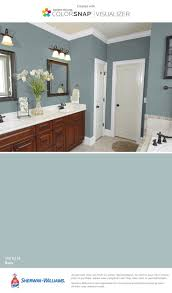 bathroom color schemes for bathroom with brown tile scheme