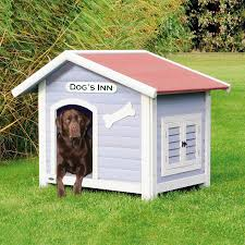 100 This Warm House 6 Tips To Building A Dog Blogging Hub