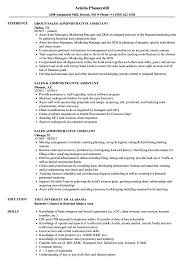 Sales Administrative Assistant Resume Sample