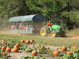 Freeport Pumpkin Festival Maine by Guide To Hay Rides In Maine I Love Halloween