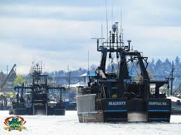 Cornelia Marie Sinks 2014 by Ak Commercial Fishing Boats Ak Crabbers Gillnetters Seiners