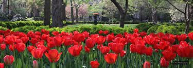 100 Keys To Gramercy Park The Insider Advice Tips And Info On