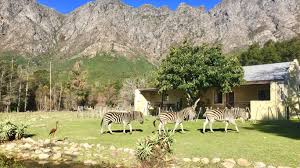 Images Cottages Country by Franschhoek Country Cottages In Franschhoek Best Price Guaranteed