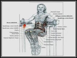 index of hareketler karin kasi gelistirme hareketleri images