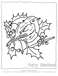 Free Printable Christmas Coloring Pages Birds Echos