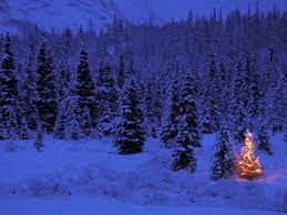 Evergleam Pink Aluminum Christmas Tree by Aluminum Christmas Classic Tree On Seasonchristmas Com Merry