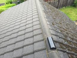 roof cleaning precision cleaning northern ltd