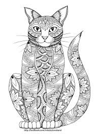 Adult Coloring Pages Of Cat
