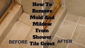 how to remove mold and mildew from shower tile grout clean