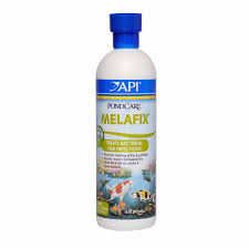 PondCare MelaFix | Petco 25 Off Frankly Eco Coupons Promo Discount Codes Wethriftcom Best Natural Essential Oils More Plant Guru Face Cleanser Organic Just Call Me Melaleuca Alternifolia Tea Tree Mega Blog Post My Memphis Mommy Mar 11 2019 Spring Valley Skin Health Oil 2 Oz Pop Shop America Handmade Beauty Box Coupon June 2018 Msa Dermalogica Medibac Clearing Adult Acne Treatment Kit No Restore Water Flow Bridge In Miami Everglades Therapy 100 Pure Prediluted Rollon Aromatherapy Bleu Lavande Set 4x15ml