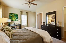 One Bedroom Apartments In Starkville Ms by One Bedroom Student Apartments In Charlotte Nc Home Design