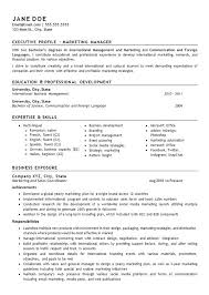 Sample Resume For Sales Executive Doc Together With International Marketing Manager Senior Samples