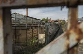 hiobsbotschaft für ludwigsburg asbestsanierung kostet drei