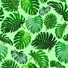 Download Seamless Tropical Jungle Leaves Background Stock Image