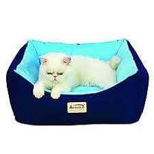 Armarkat Cat Bed by Luxury Cat Beds Baskets Bolster Beds U0026 Cuddlers Petsmart