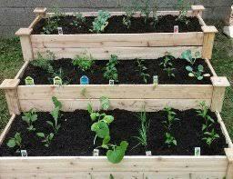 tiered raised garden bed gardening ideas
