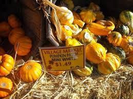 Alameda Pumpkin Patch 2015 by Oakland Village Market Brightens Kids U0027 Halloween U2013 East Bay Times