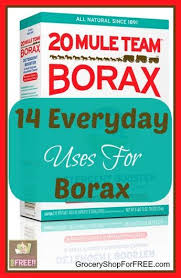 Fleas Hardwood Floors Borax by 31 Best Dirrrty Borax Uses Images On Pinterest Borax