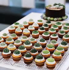 Succulent Cakes By Ivenoven Will Make Every Lovers