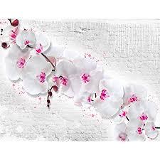 runa fototapete blumen orchidee steinwand modern vlies wohnzimmer schlafzimmer flur made in germany weiss rosa 9323010b