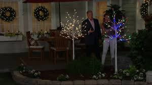 Kringle Express Indoor Outdoor 6 Plug In LED Starlight Birch Tree On QVC