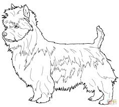 Australian Terrier Dog Coloring Page