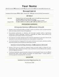 Cook Resume Sample Beautiful Summary Examples For Customer Service Unique Of