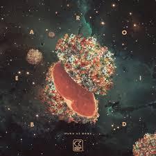 Bearoid – Northern Lights Lyrics