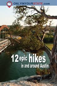 Pumpkin Patch North Austin Tx best 25 austin texas style ideas on pinterest oasis looks