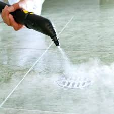 bathroom steam cleaner tile floor hire 7 clever and