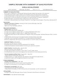 Summary Examples For Resume Career Example Professional On A Sample Of Sales