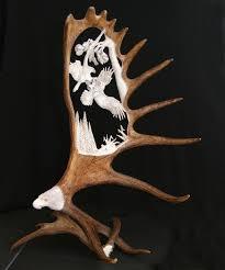Moose Shed Antler Forums by Hand Carved Moose Antler Carving Depicting 2 Eagles Fighting Over