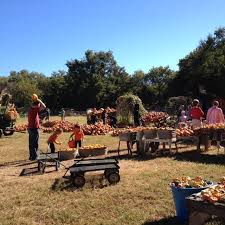 Pumpkin Patches In Okc by Parkhurst Pumpkin Patch The One Pumpkin Patch In Oklahoma You
