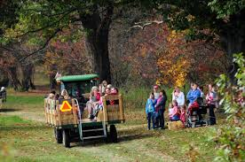 Stone Mountain Pumpkin Festival by 18 Awesome Fall Festivals Happening In Montgomery County Pa
