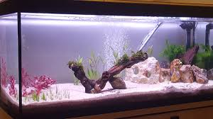 eclairage led pour aquarium eau de mer re d éclairage easyled pour eau douce eclairage led
