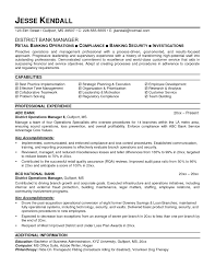 Sample Resume Format For Banking Sector New Bank Operations Manager Template