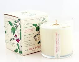 Wild Tomato Vine Soy Candle design by Kobo Candles – BURKE DECOR