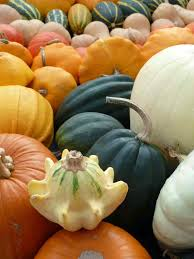 Varieties Of Pumpkins Uk by Love Letter From London Pumpkins Leaves And Halloween
