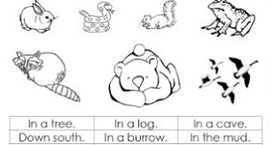 Free Coloring Pages Of Animals And Their Babies A1 Hibernating