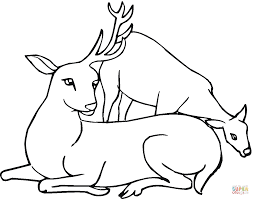 Click The Deer With One Antler Coloring Pages