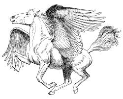 Pegasus Coloring Pages Beautiful Realistic For Adults
