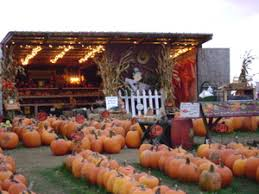 Pumpkin Festival Ohio by Northeast Ohio Fall Festivals And Pumpkin Patches