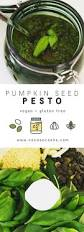 Go Raw Pumpkin Seed Bar by Best 25 Pumpkin Seed Recipes Ideas On Pinterest Recipe For