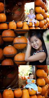 Best Pumpkin Patch Hampton Roads by 42 Best Pumpkin Patch Photography Images On Pinterest Pumpkin