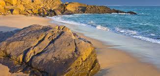100 Silver Strand Beach Oxnard Dog Walkers In CA Dog Walking Near You Wag