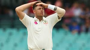 Australian Sports Science Medicine Manager Alex Kountourix Said After Returning From The UK Following Champions Trophy And His County Cricket