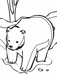 Antarctica Coloring Page Antarctic Animals Pages Home