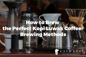 13 Aug How To Brew The Perfect Kopi Luwak Coffee Brewing Methods Instructions