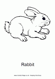 Rabbit Colouring Page 4