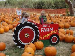 Joans Pumpkin Patch by Brianyoxall Com October 2012